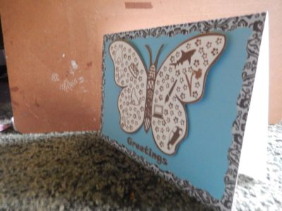 Side view of butterfly card