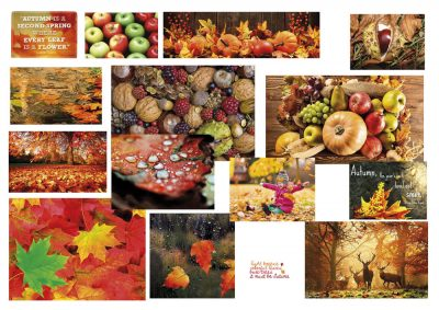 Moodboard for Autumn