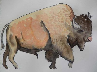 Bison in watercolour