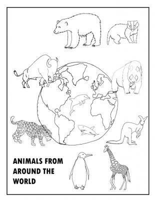 Animals around the work linework 1