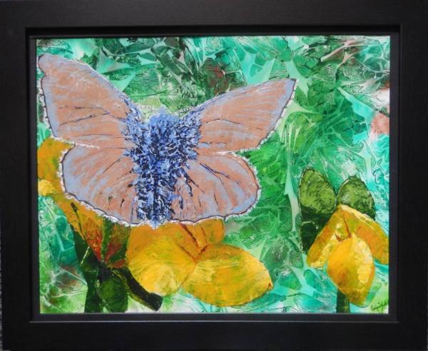 Framed common blue