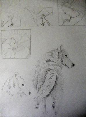 Wolf on a journey sketchbook