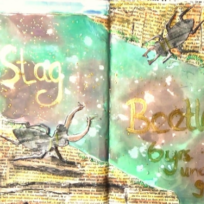 Stag beetles on collaged page