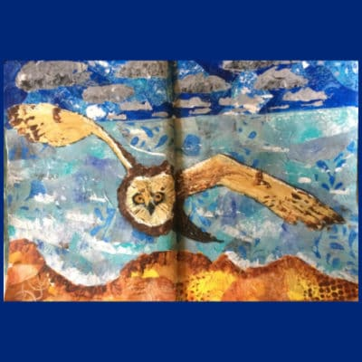 Collage of owl